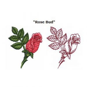 Rose Bud and Roses are Red