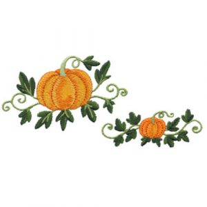 Pumpkins with Vine