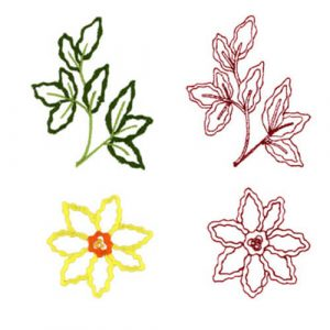 Wildflower & Wildflower Leaves