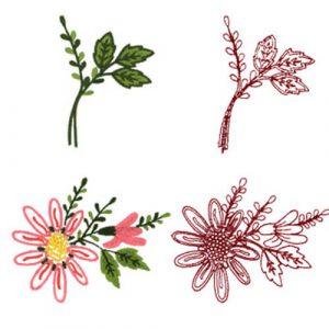 Marguerites & Marguerites Leaves
